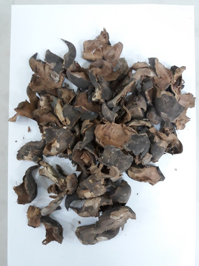 Conversion of water caltrop husk into high-value carbon-based products
