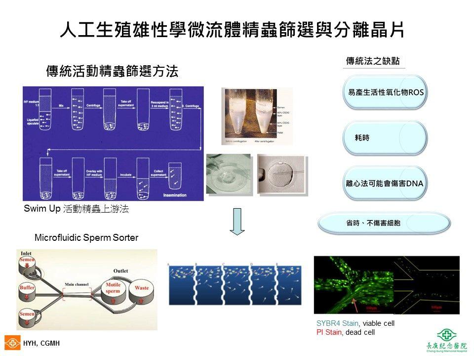 微流體活動精蟲篩選與分離晶片