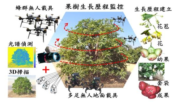 網宇實體感測(CPS)3D立體建模應用於果樹生長監控