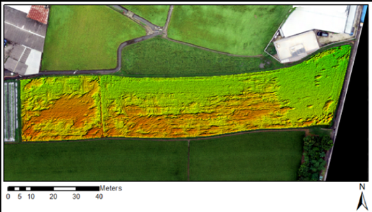 Real-time identification of crop losses using UAV imagery