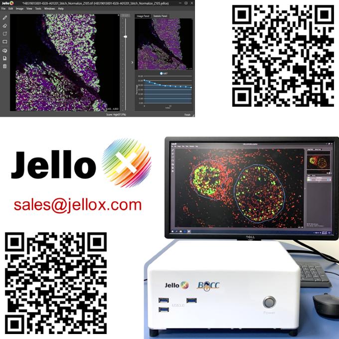 3D數位病理影像暨AI輔助分析診斷平台