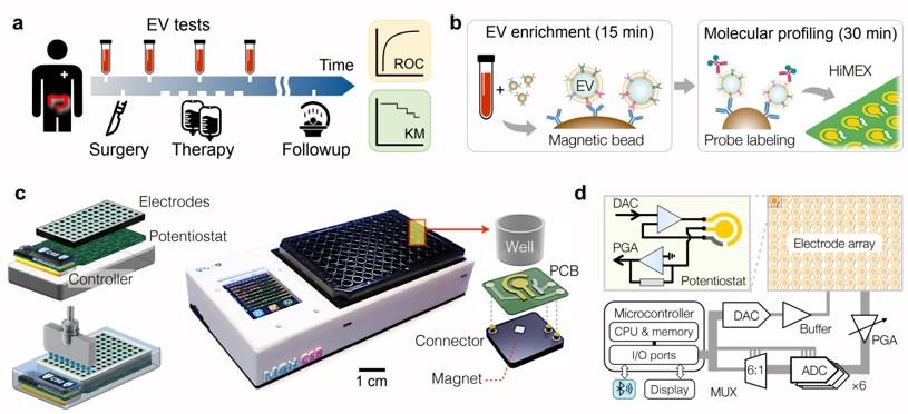 癌症檢測之磁電化學物聯網傳感系統