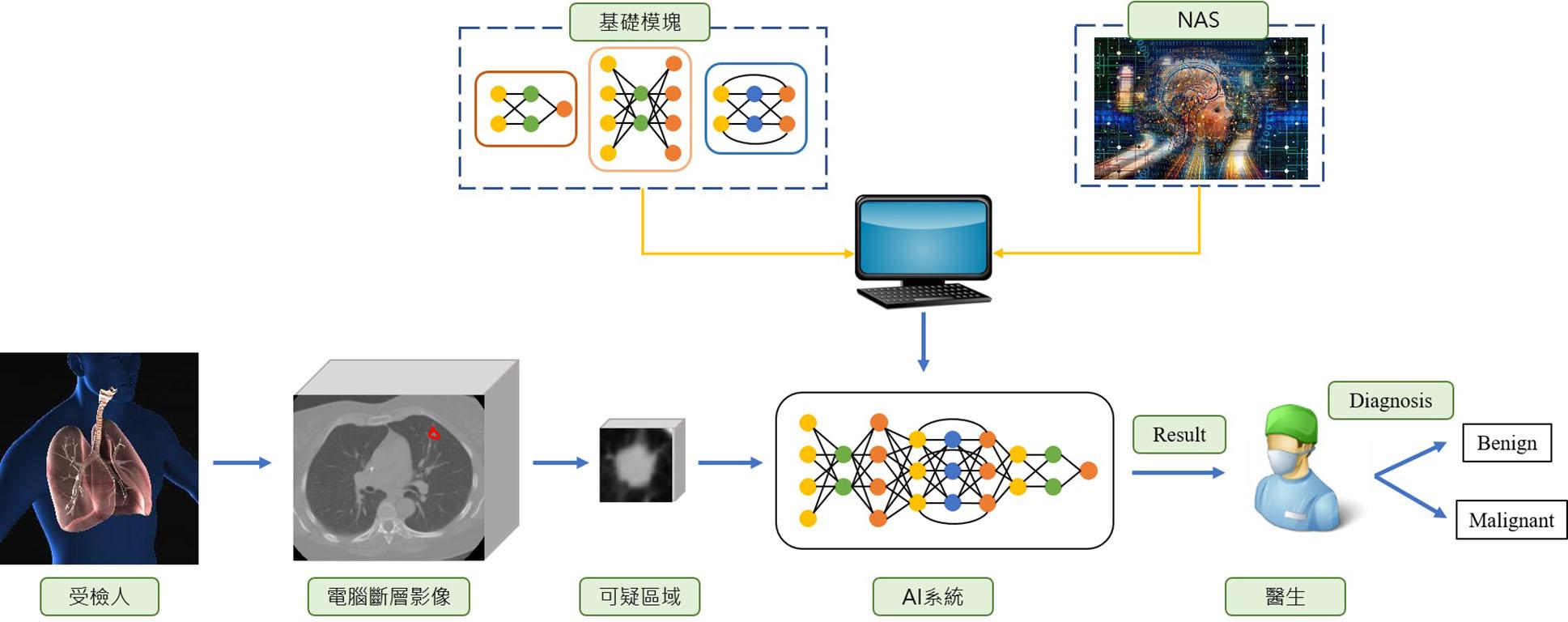 自我網路架構搜尋與注意力機制之肺部電腦斷層掃描結節輔助診斷系統