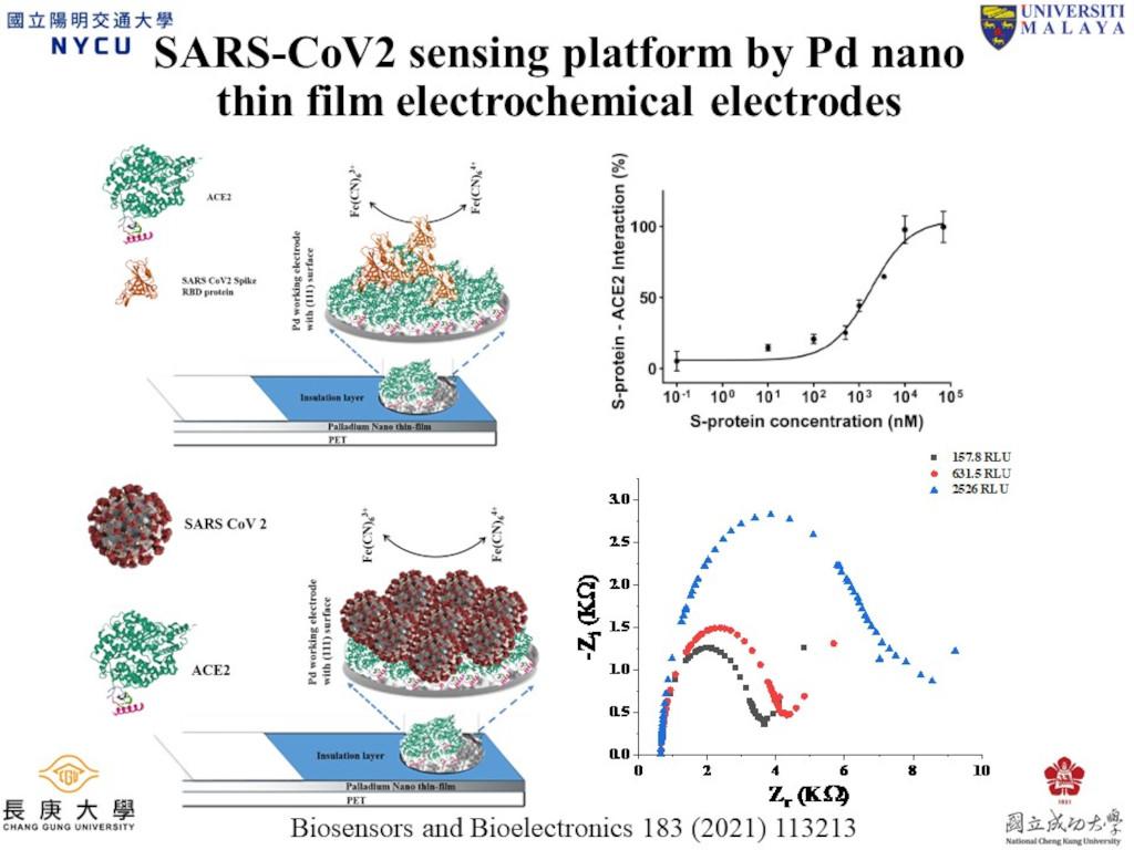 開發鈀奈米薄膜電化學感測平台用於病毒檢測與抑制分子篩選