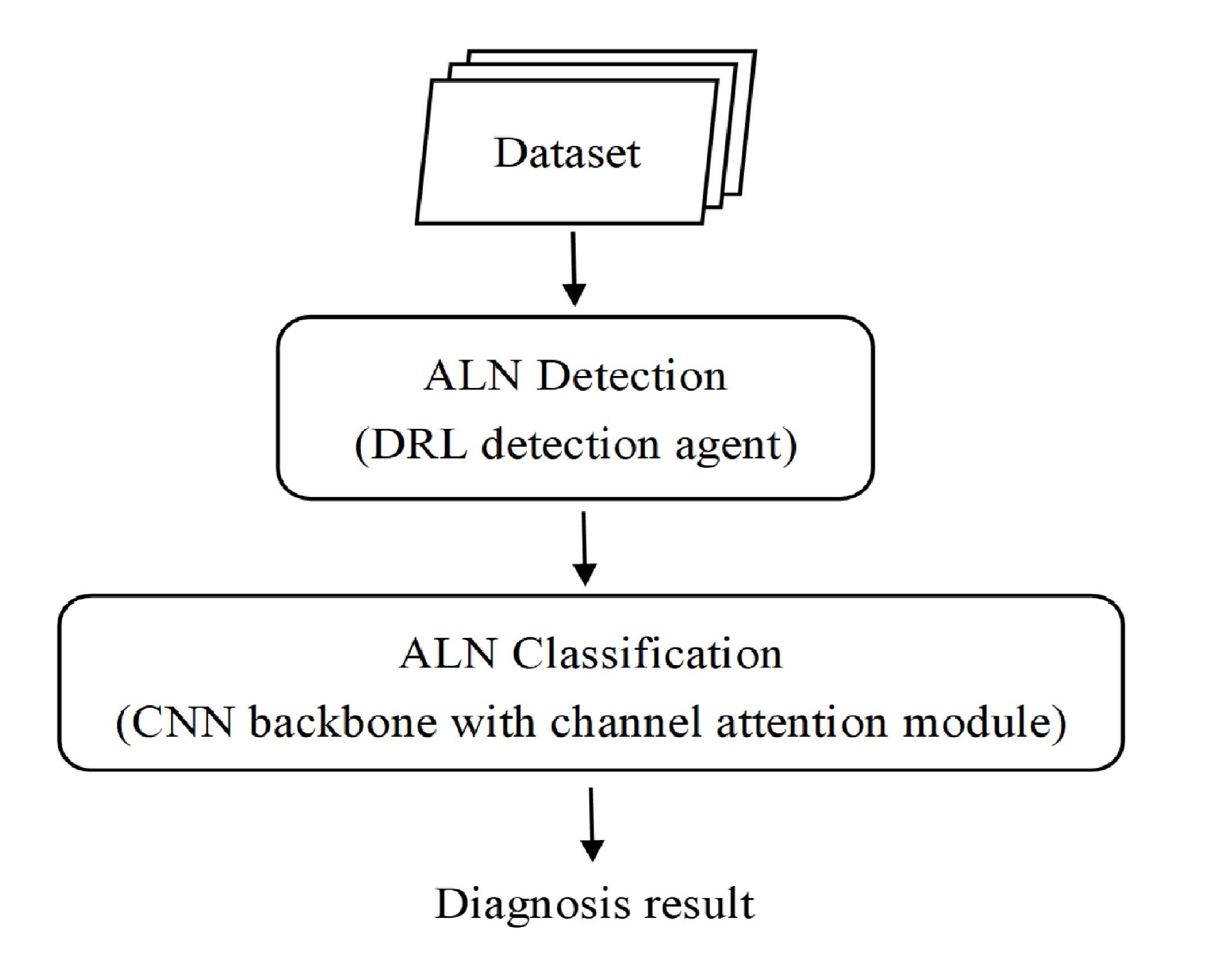 深度強化學習框架使用超音波影像診斷腋窩淋巴結狀態