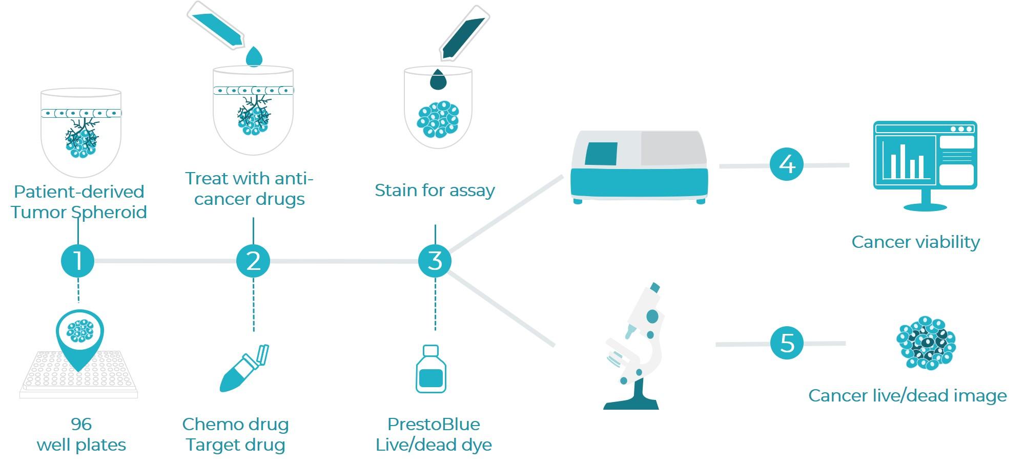 生物製造之癌症晶片應用於患者特異性用藥預測平台