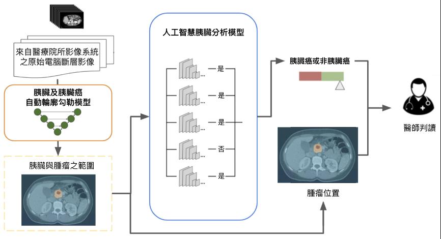 人工智慧輔助胰臟癌偵測工具-PANCREASaver
