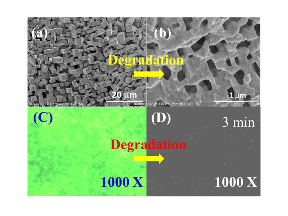 Zinc Oxide NanocapsulesManufacturing method