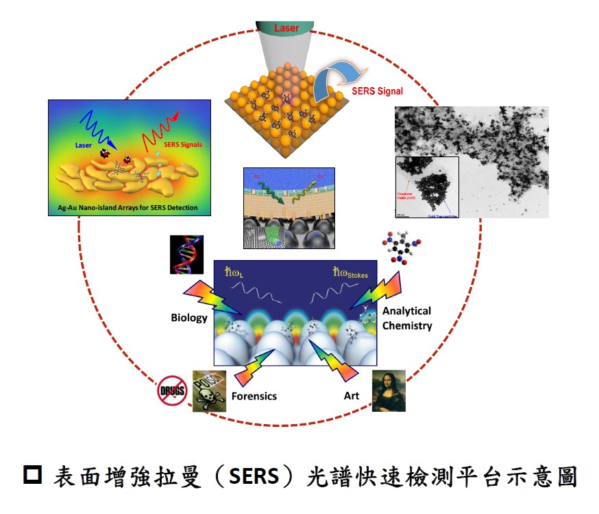 2D Nanoparticle Arrays of Surface-Enhanced Raman Scattering (SERS) Detection Platform for Environmental-Biomedical Sensing
