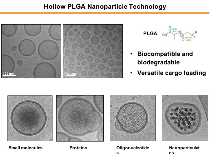 Viromimetic hollow nanoparticles for antiviralanticancer vaccination