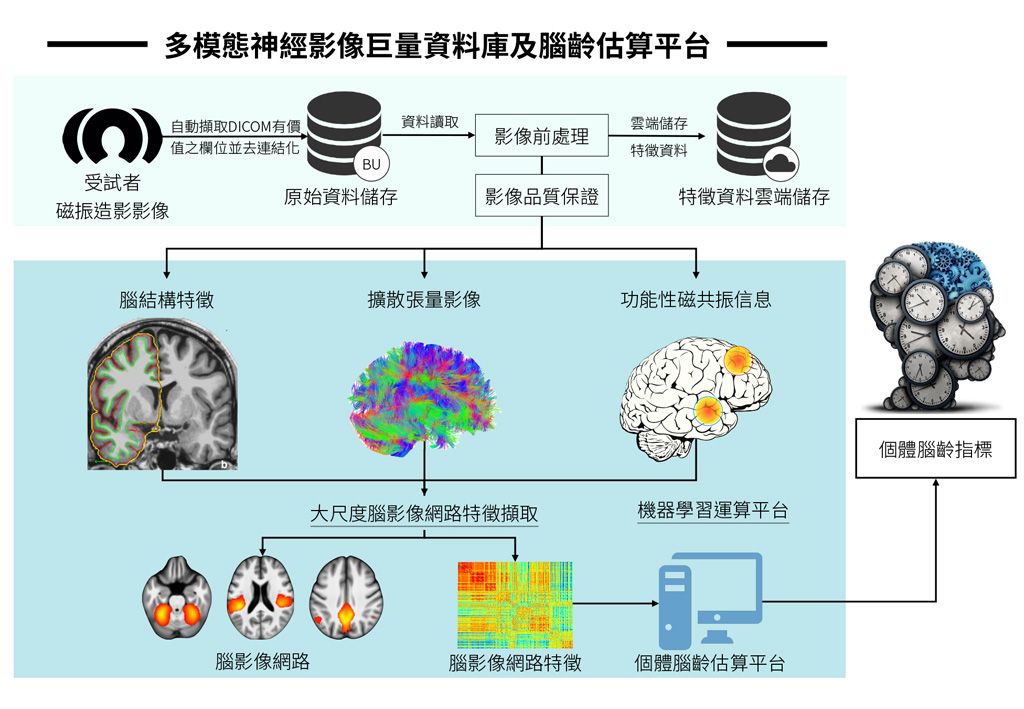 Using neuroimagingmachine learning approach to construct brain-age estimation platform
