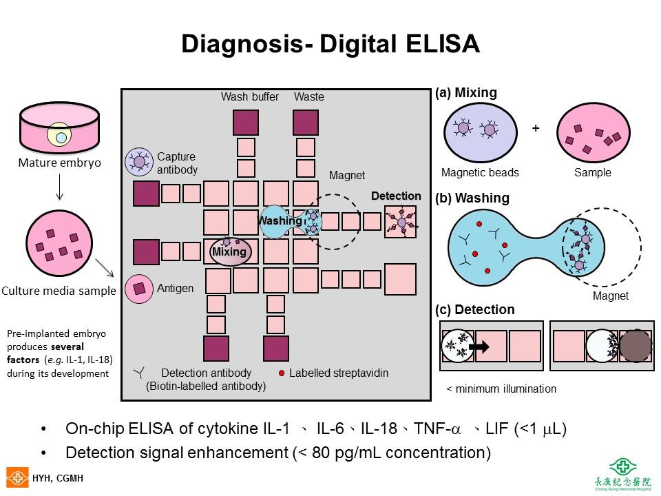 Magnetic Bead-Based Digital Microfluidic Immunoanalysis Device