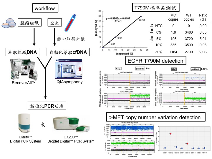 Development of digital PCR-IVD for FFPEliquid biopsy detection in cancer personalized therapy