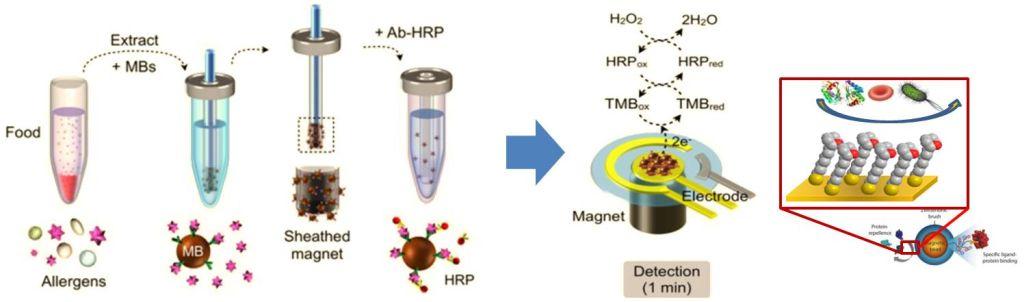 IoT of food allergen detector system