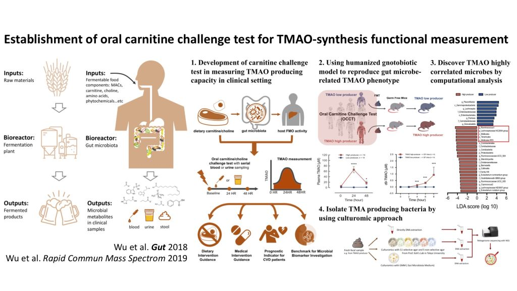 Establishment of oral carnitine challenge test for microbiota-directed personalized nutrition