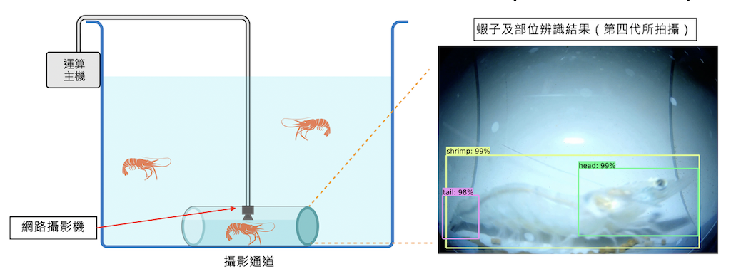 An Artificial Intelligence Image Processing Module for Shrimp Recognition and Body Length Measurement