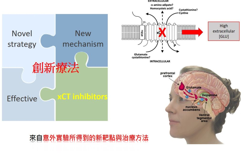Development of Novel Therapeutic Drugs for Treatment and Prevention of Opioid Addiction