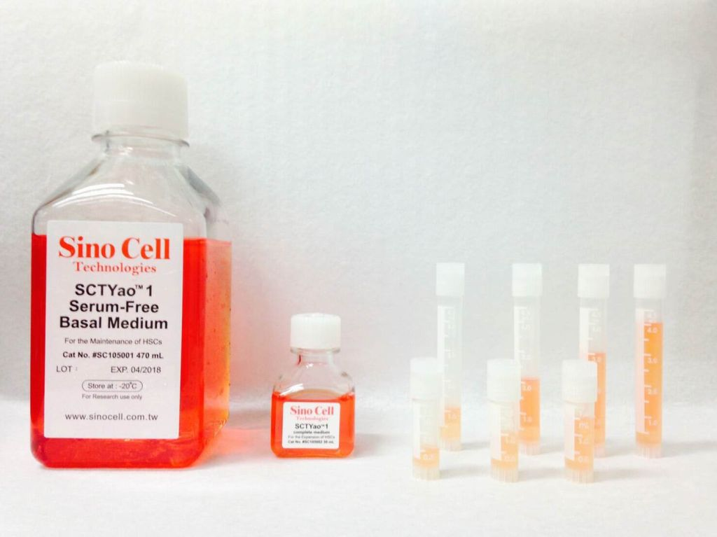 A Serum-free, Plasma-free and Low DMSO Content Freezing Medium Combination for Hematopoietic Stem Cell Cryopreservation
