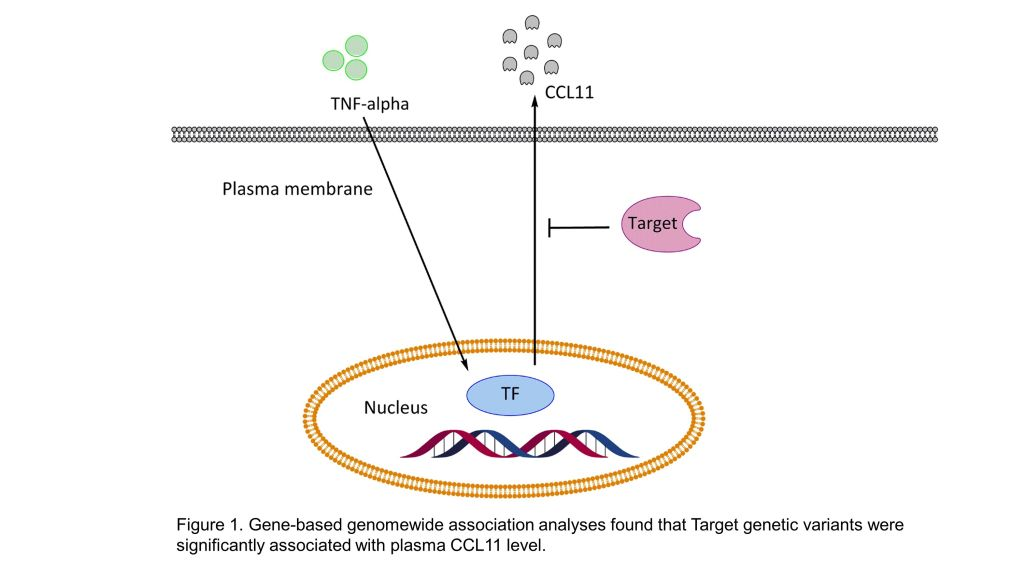Heroin dependence associated neurodegeneration target identification and drug development