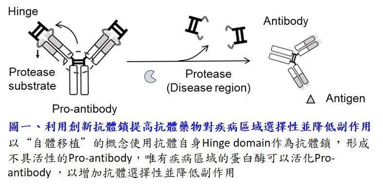 The novel antibody lock to enhance antibody drug disease selectivity and reduce side effects