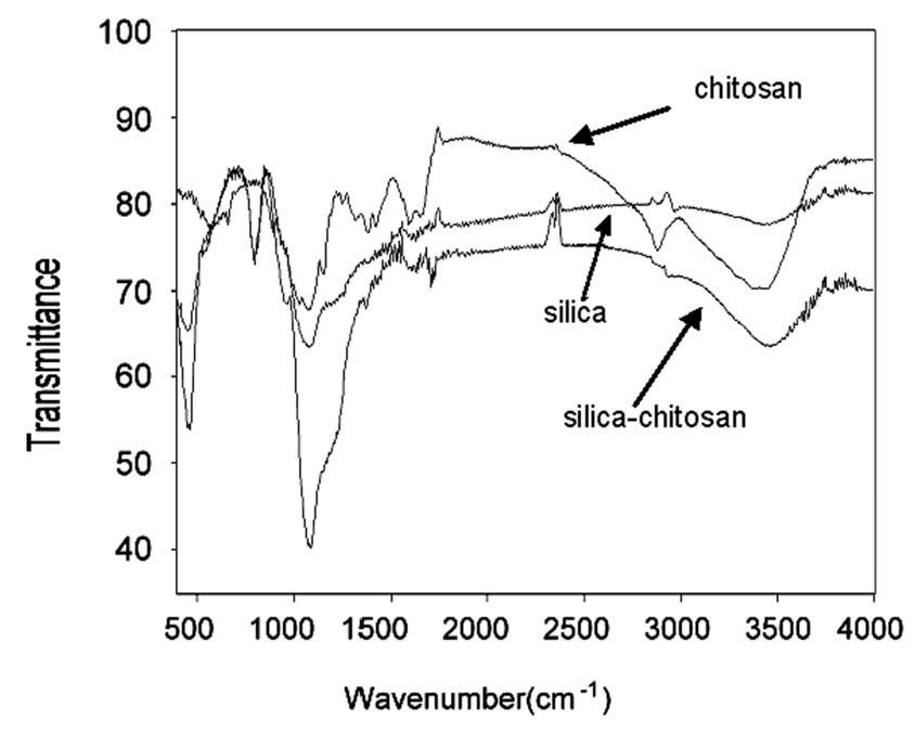Methodology for Curcumin-Loaded Mesoporous Silica Nanoparticles
