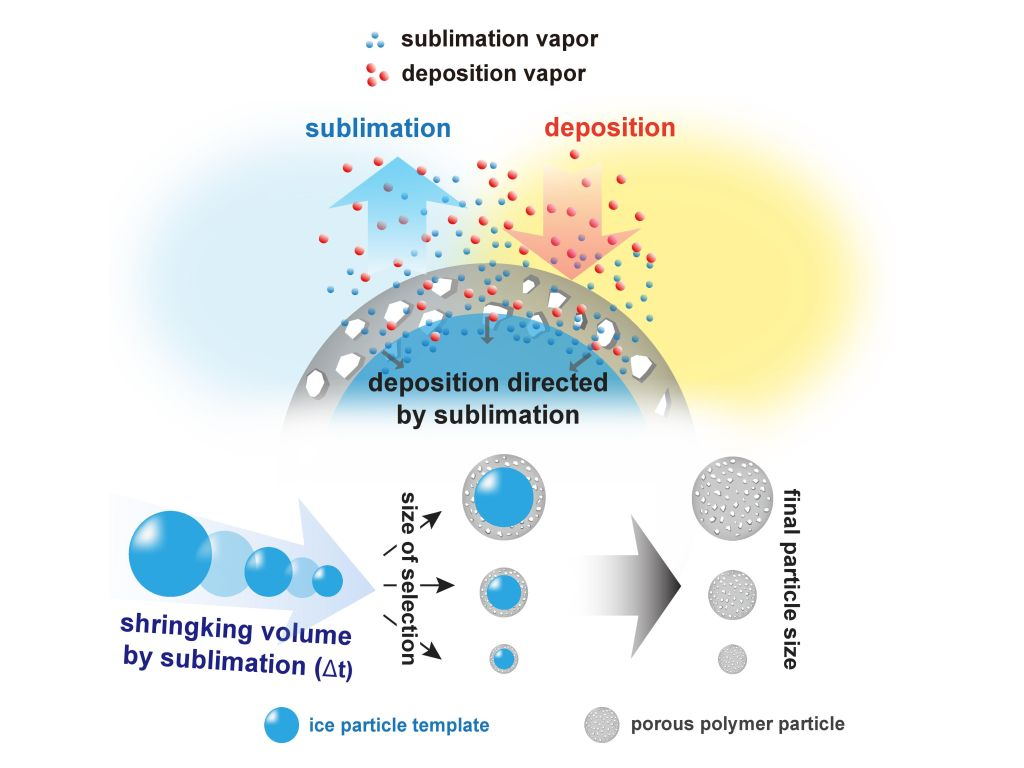 Three-Dimensional Poly-p-xylylene Porous Structures and Composites