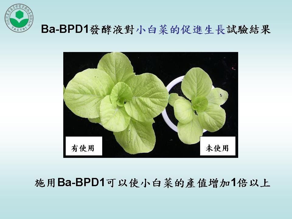 A multifaceted strain of Bacillus amyloliquefaciens with commercialization milestones- biofertilizer, biofungicide, feed additive, aquaculture and water purification