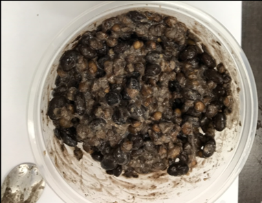 "Fermentation technology: fermented black soybean and adlay with Bacillus subtilis (natto) for ""LOHAS"""