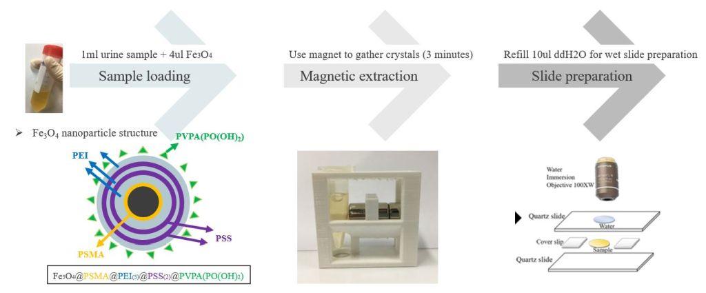 Urine Crystal Detection System Using Raman Microspectroscopy