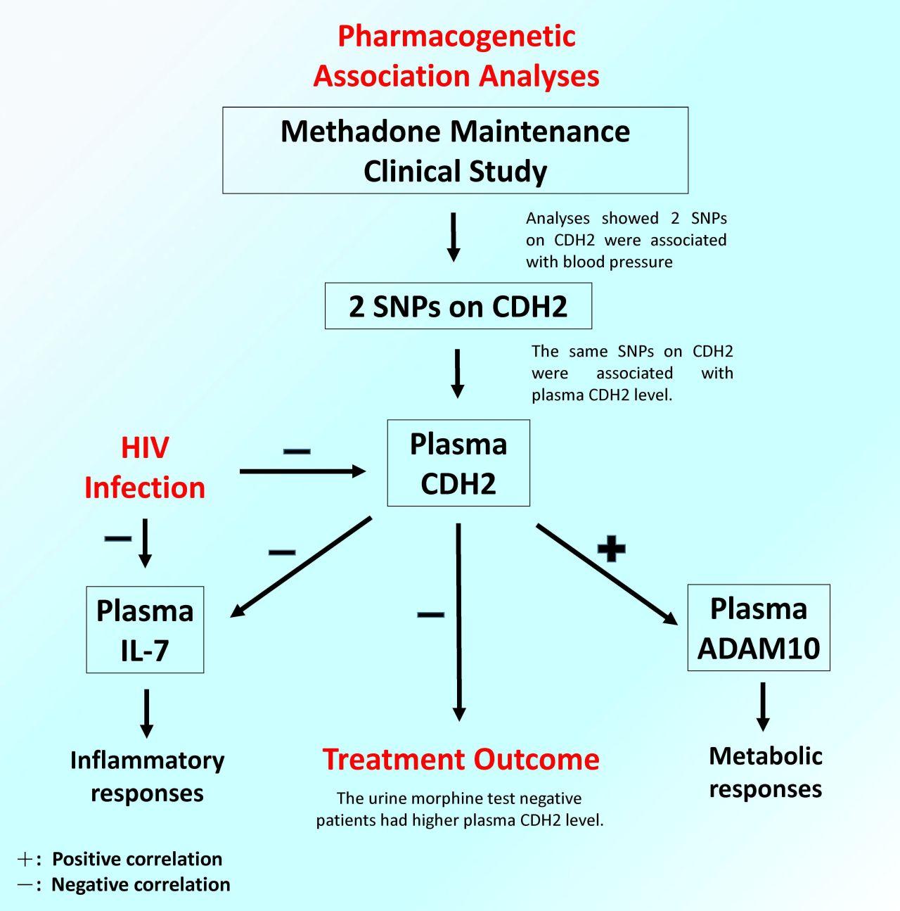 Multiple diagnostic plasma biomarkers for symptoms of opioid dependent patients
