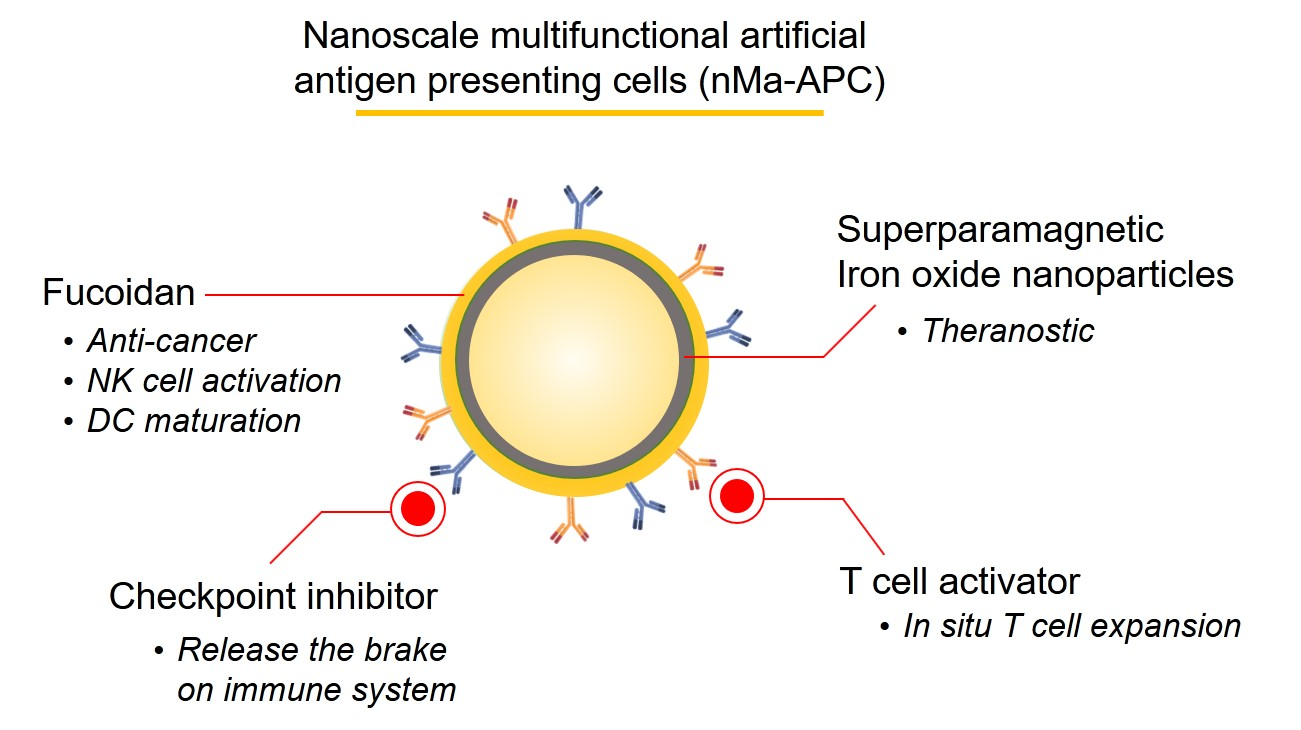 Low-dose nanoscale biomimetic cell structure – Next-generation platform technology for advanced precision immunotherapy