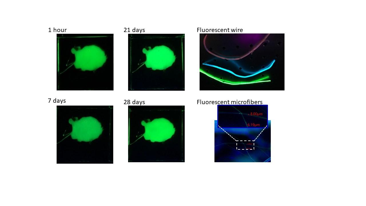 Air-stable luminescent organic-inorganic perovskite nanocrystal-polymer composites