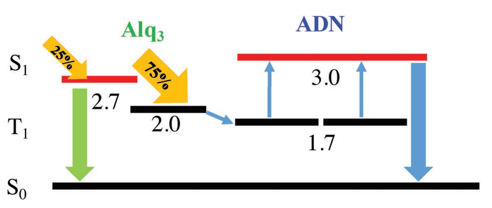 Novel Triplet–Triplet Annihilation Upconversion in Electroluminescence Device