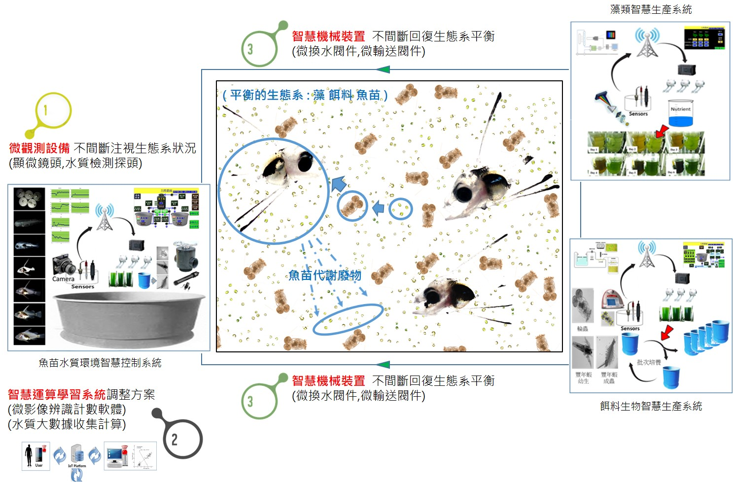 Fish breeding intelligent production system