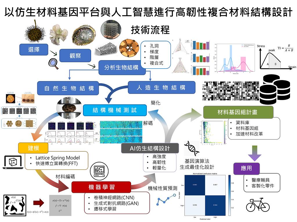 以仿生材料基因平台與人工智慧進行高韌性複合材料結構設計