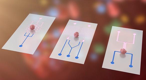 AM-Enabled Precision Medicine in Developing in vitro Bioengineered Cancer Drug Screening Platform