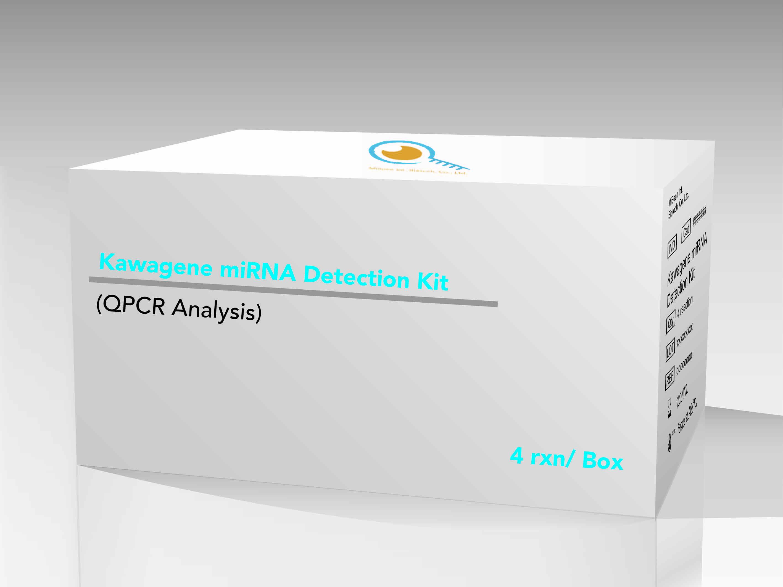 miRNA multiplex detection platform