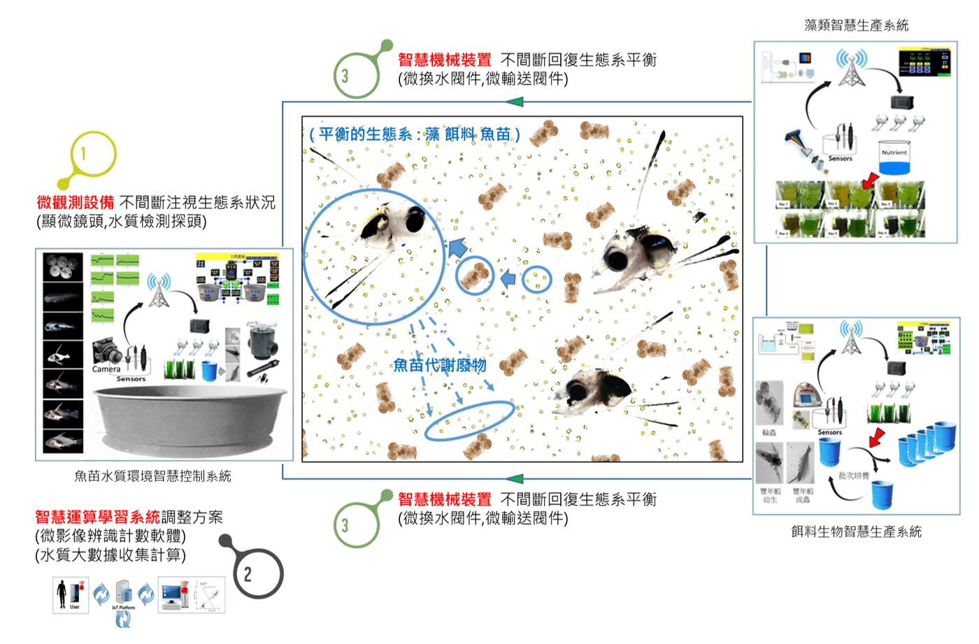 智慧魚苗生產系統