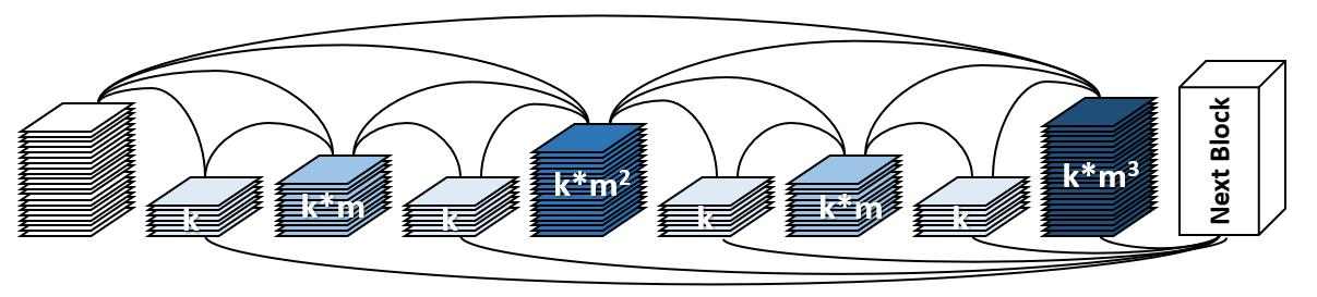 低功耗高性能AI神經網路之設計、加速及佈署